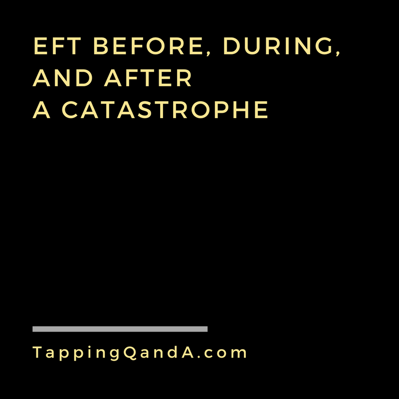 Pod #291: EFT Before, During, and After a Catastrophe w/ Gwenn Bonnell